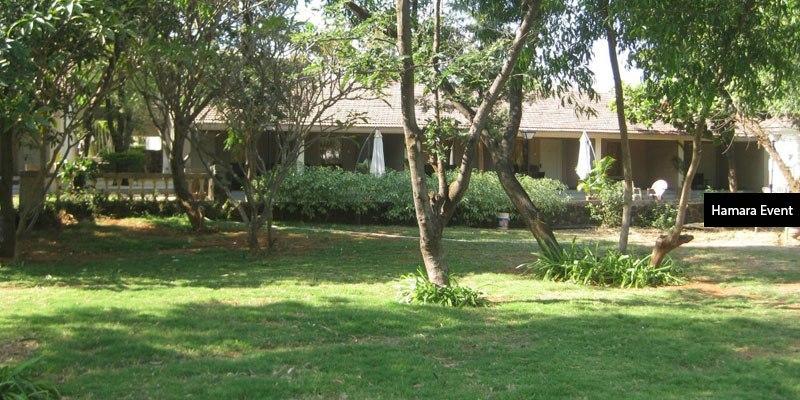 Garden-Lawn